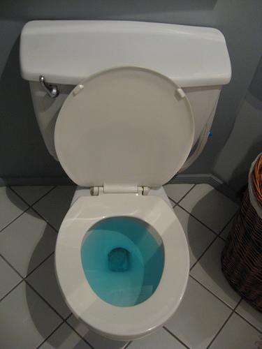 Dot Approved Bathrooms Drug Free Worker